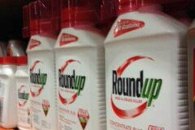 RoundUp on store shelves
