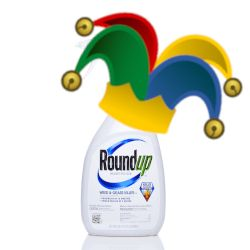 colorful jester hat with bells on top of a blue and white bottle of Monsantos glyphosate Roundup herbicide