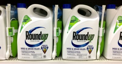 Monsantos Roundup herbicide on a store shelf