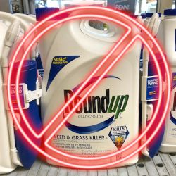 Roundup jug with NO symbol over top