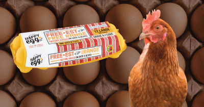 Happy egg packaging and a chicken near by its egg background.