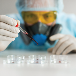 scientist in a hazmat suit in a laboratory doing research with blood in petri dishes