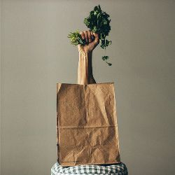 grocery shopping bag on a stool with a hand in a fist holding a handful of greens