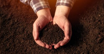 farmer in a flannel shirt holding a handful of deep brown colored soil