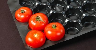 tomatoes packed in a black plastic shipping container