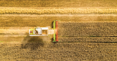 A picture of a tractor harvesting a crop field