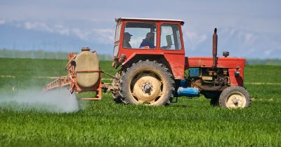 red tractor on a farm crop field spraying a pesticide mist
