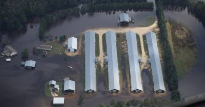 Waterkeeper Alliance image of a CAFO during a flood after Hurricane Florence