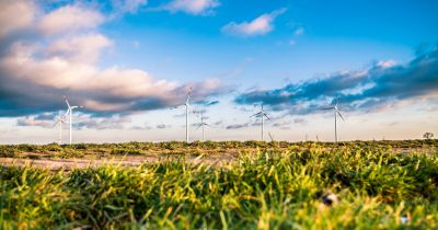 Wind turbines in grassy field with blue sky