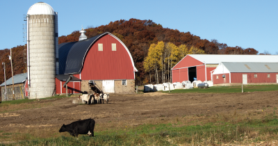 Farm with a red barn.