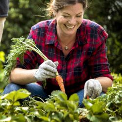 smiling woman in a garden harvesting carrots