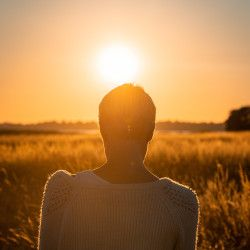 woman sitting in a farm crop field with her back to the camera facing the sunrise