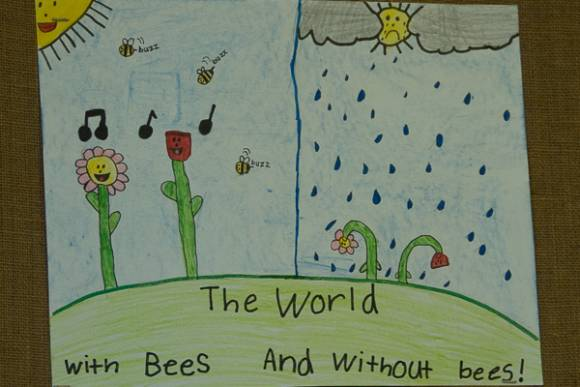 bee world