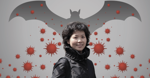 A photograph of Shi Zhengli over a background of a shadow of a bat and microscopic red viruses