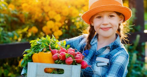 young girl in a farm field with a box of fresh harvested vegetables