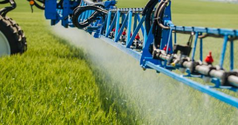 blue tractor on a farm crop field spraying pesticide on crops