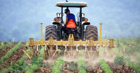 farmer in a tractor spraying a crop field with herbicide