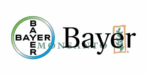 Bayer logo overlapping the Monsanto logo