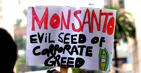 """Monsanto: Evil Seed of Corporate Greed"" protest sign"