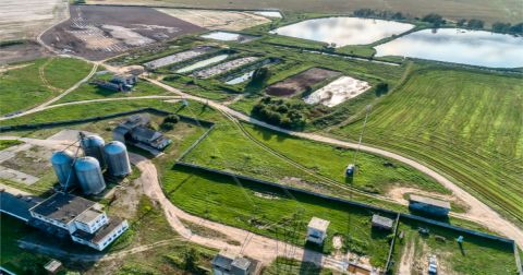 aerial view of a factory farm for pigs