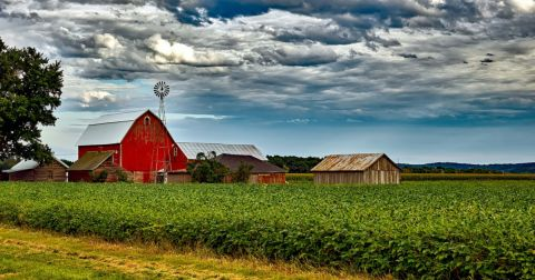 red barn on a farm with crop field of corn on a cloudy day