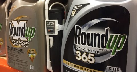 black and gold bottles of Monsantos glyphosate herbicide Roundup being sold on a store shelf