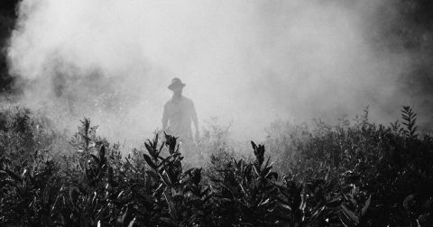 A person walking in a field surrounded by spray