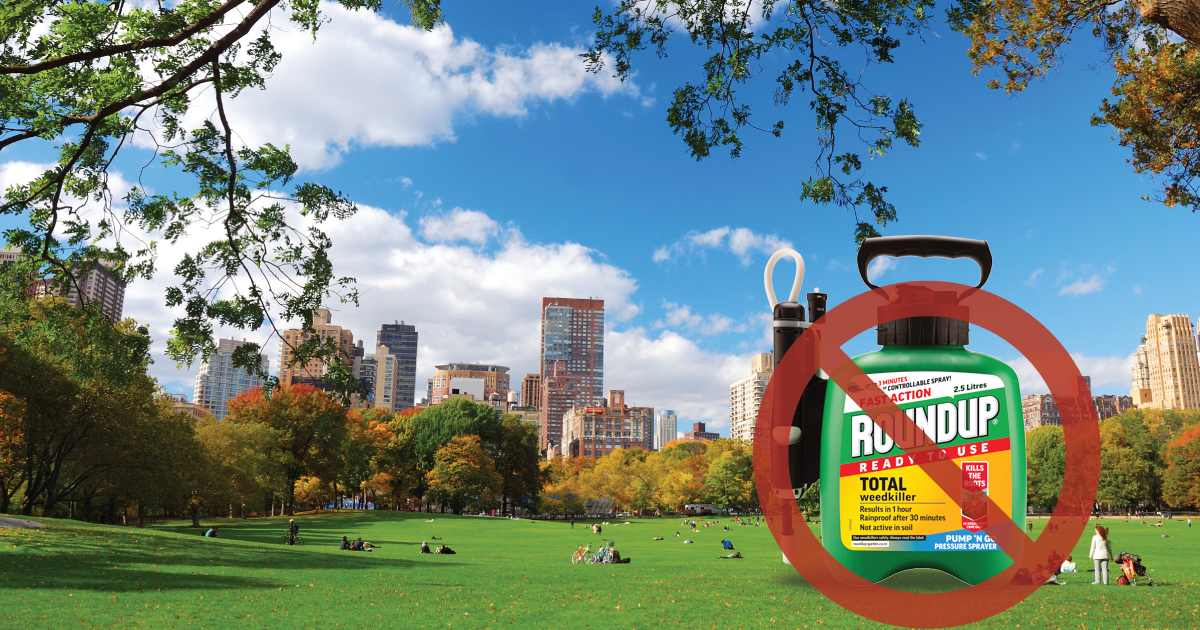 NYC Leaders Join Calls for Ban on Monsanto Herbicide