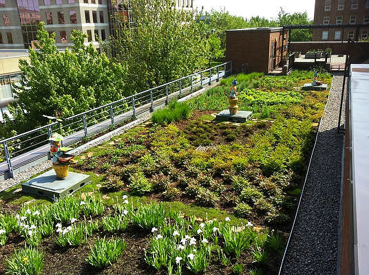 28 Inspiring Urban Agriculture Projects That Will Make You